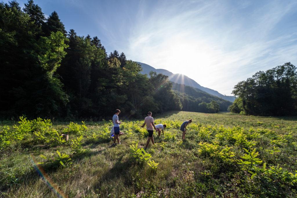 photographe famille enfant photo valence drome montélimar