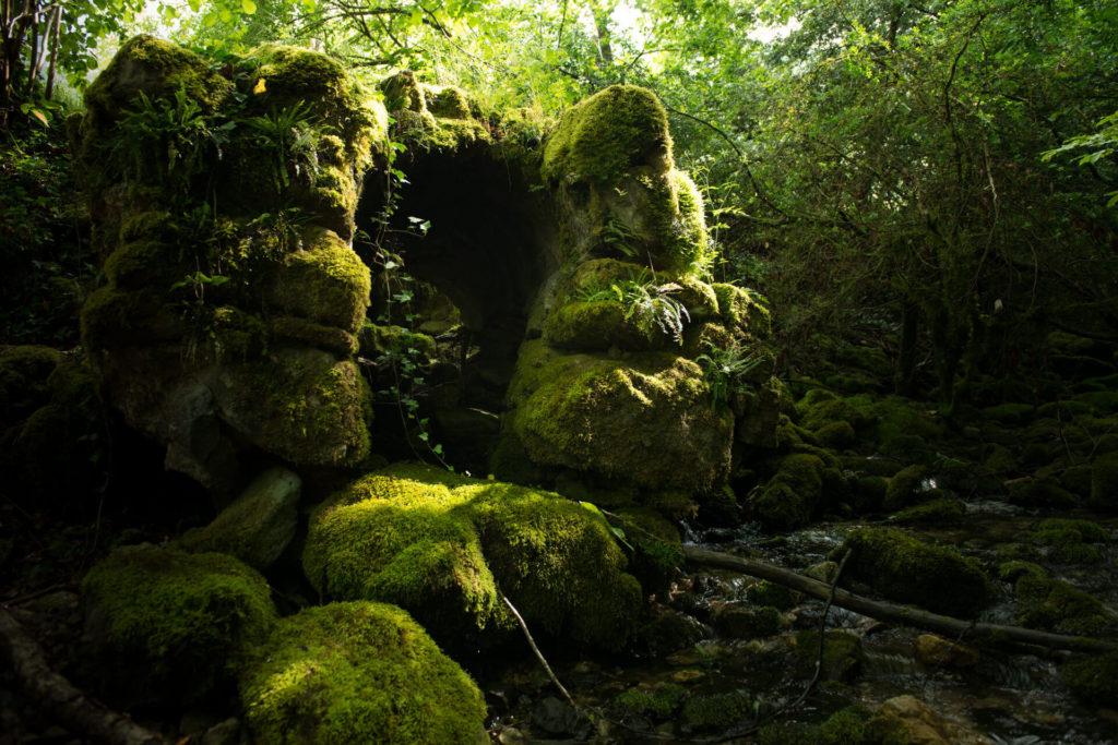 photographe nature reportage photo valence drome session shooting montélimar